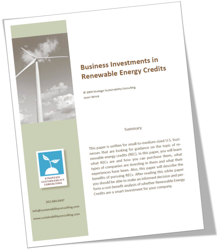Business Investments in Renewable Energy Credits