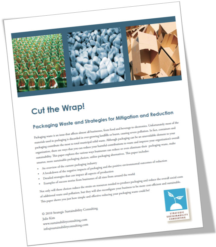 Cut the Wrap: Packaging Waste and Strategies for Mitigation and Reduction