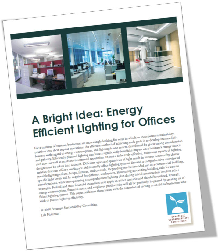 A Bright Idea: Energy Efficient Lighting for Offices
