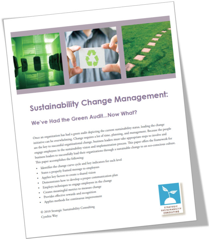 Sustainability Change Management: We've Had the Green Audit, Now What?