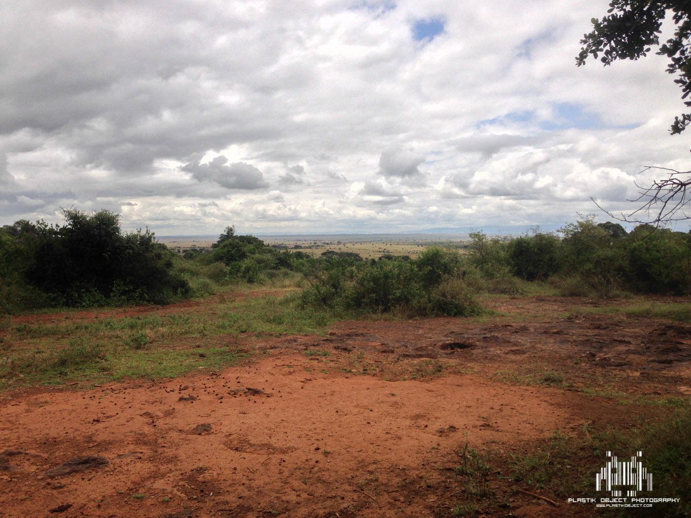 Turning around 180 degrees from the elephants was the view into the Nairobi National Park.