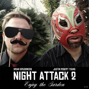 Night-Attack-2-Front-Cover-305x305.jpg
