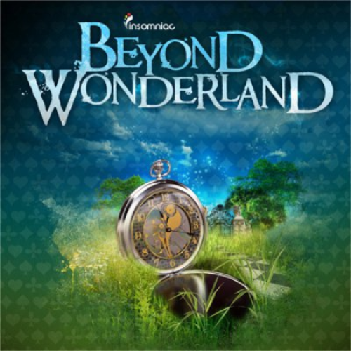 non sequitur insomniac beyond wonderland discovery project bay area
