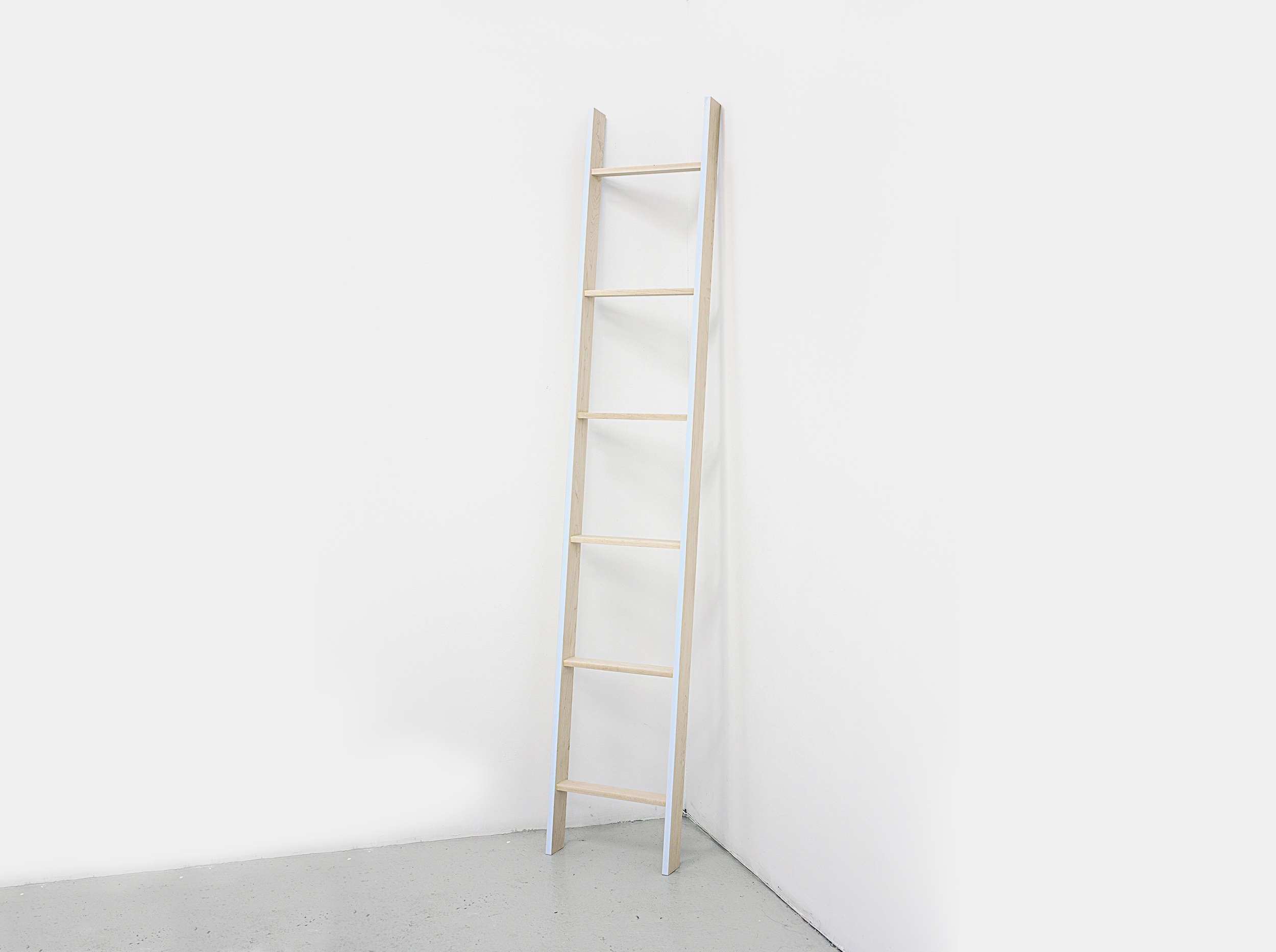 Ladder_2011_NickPoe.jpg