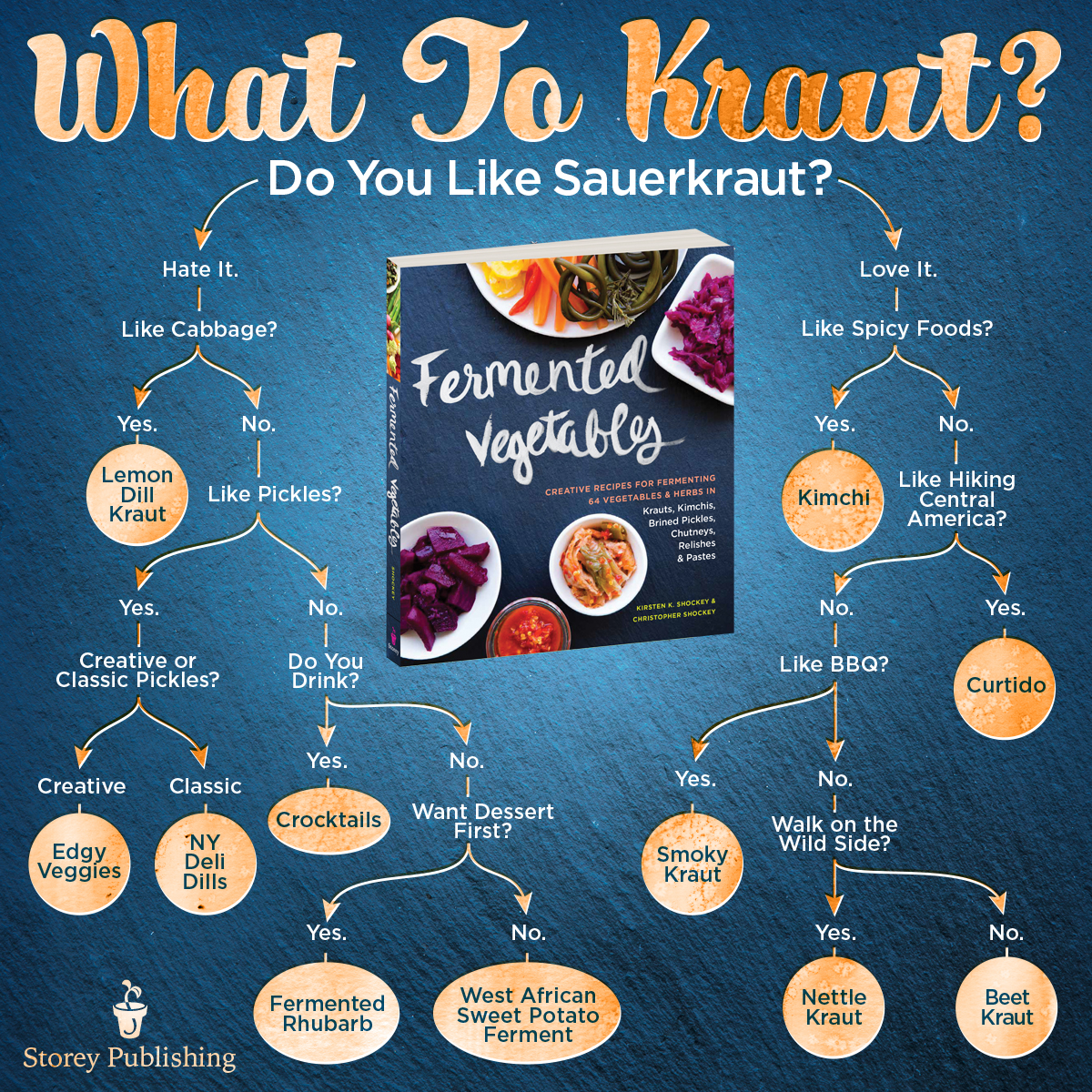 fermented vegetables infographic