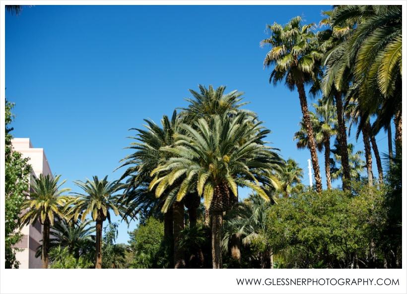 Vegas - Glessner Photography_0005.jpg