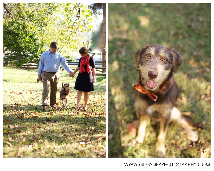 Engaged couple walking with dog in bowtie in Old Salem