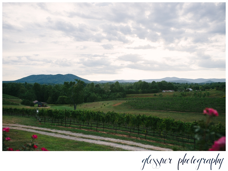 NC Vineyard Wedding | Glessner Photography | Mount Airy Wedding Photographer_0037.jpg
