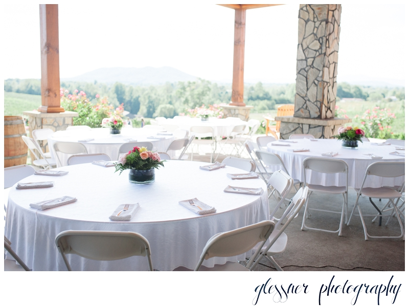 NC Vineyard Wedding | Glessner Photography | Mount Airy Wedding Photographer_0036.jpg