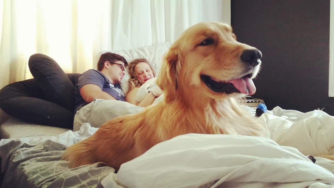 Check out Mom and Dad in awe of baby Maverick while Dexter, their golden retriever, hangs out happily at the foot of the bed!  Dogs are family too! At a homebirth all family members can be present.