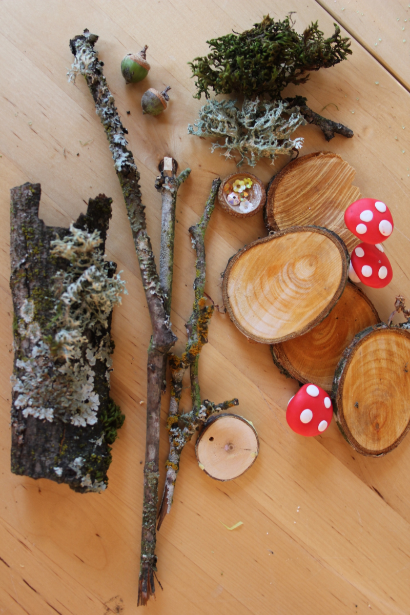 1. Collect some inspiring natural materials. Thanks, Mother Nature!