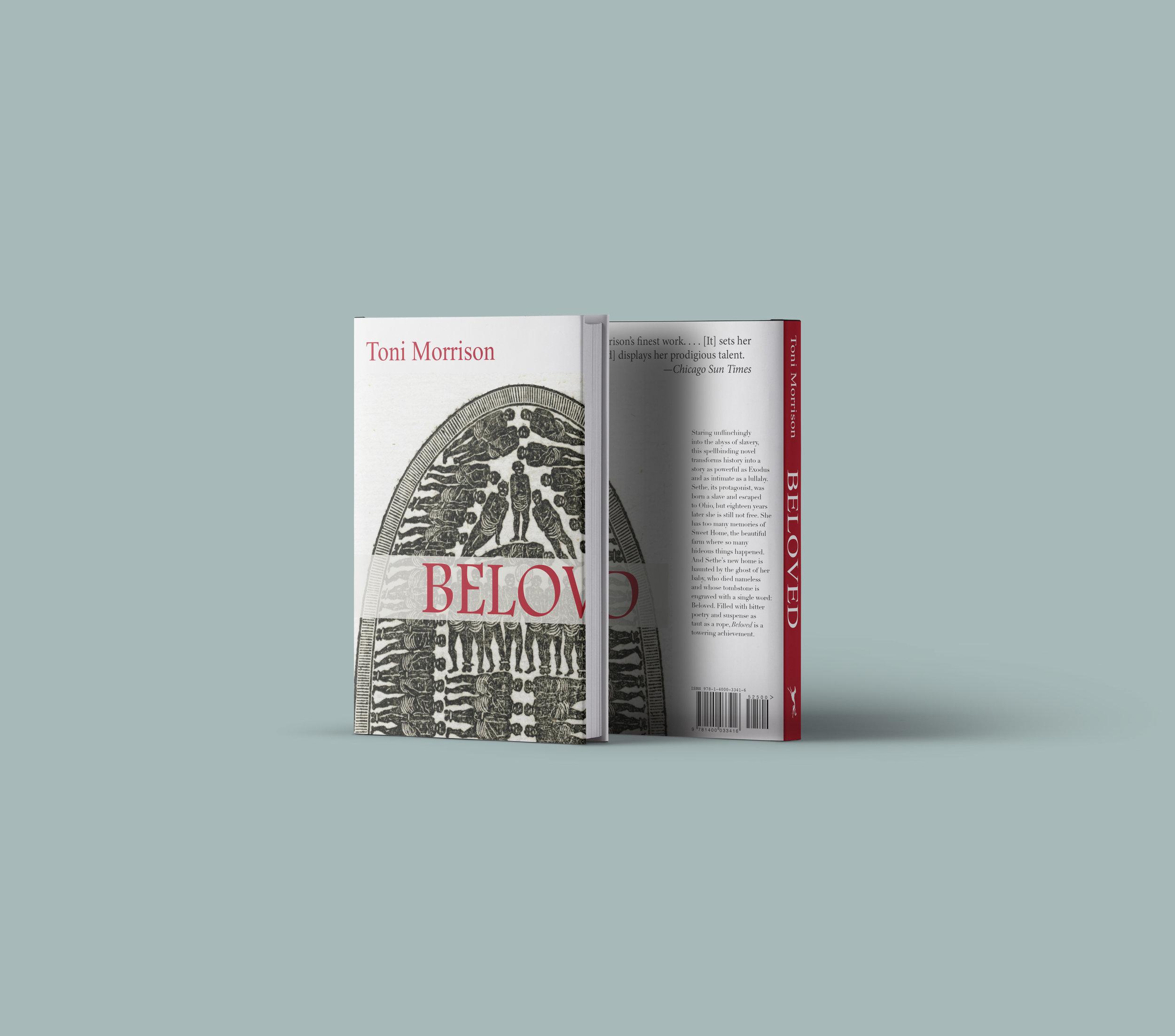 Dust-jacket-Book-Mockup v2.jpg
