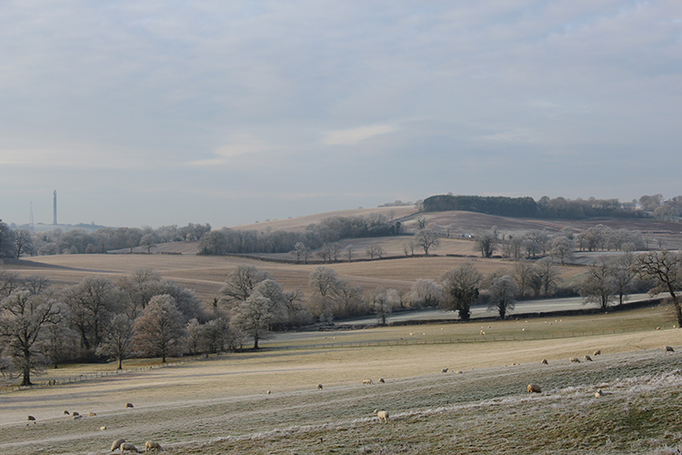 We surveyed the 730 hectare estate to inform a Farm Environment Plan and Higher Level Stewardship Scheme Application.