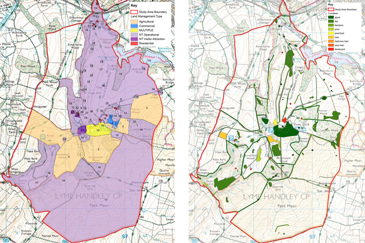 We undertook a comprehensive GIS analysis of the park to provide detailed understanding and facilitate management.
