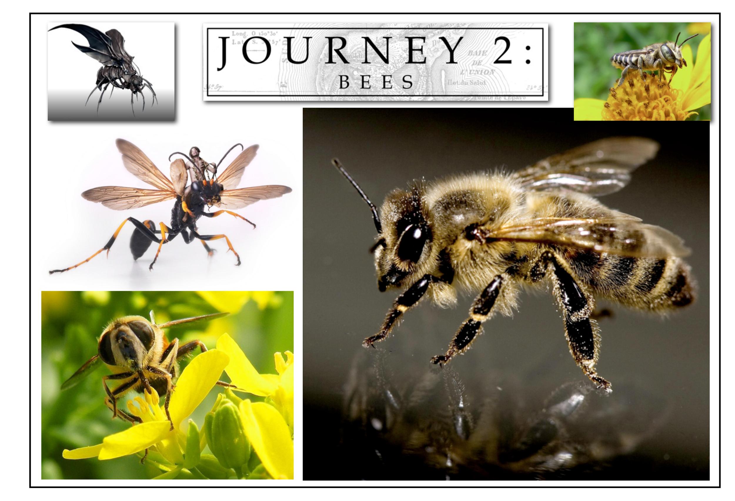 JourneyBoards041610-60.jpg