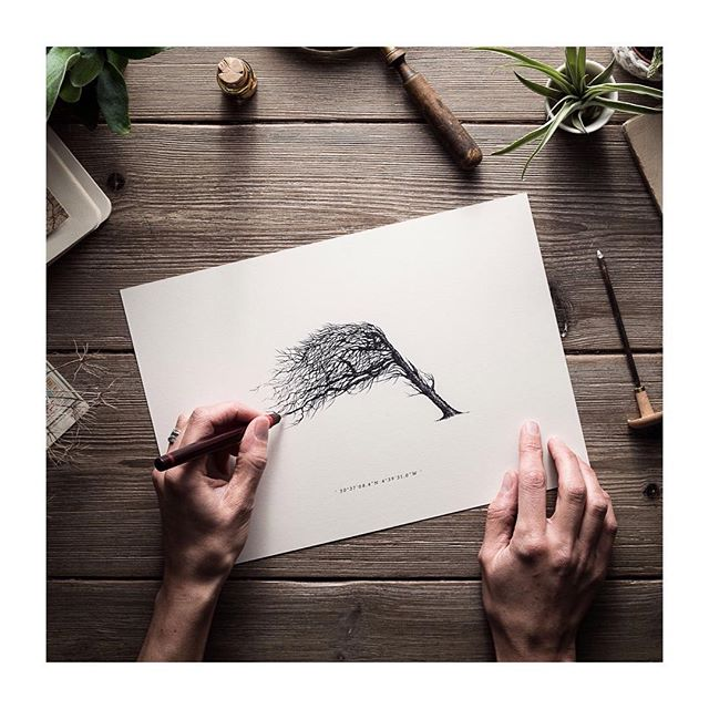 Packing and posting weekend print orders of windpruned trees this morning - pretty apt as it's a little 💨💨💨🌲 down west today 😬 printshop link in bio 👍🏻 📸👉🏻 @theheadthetail ✨