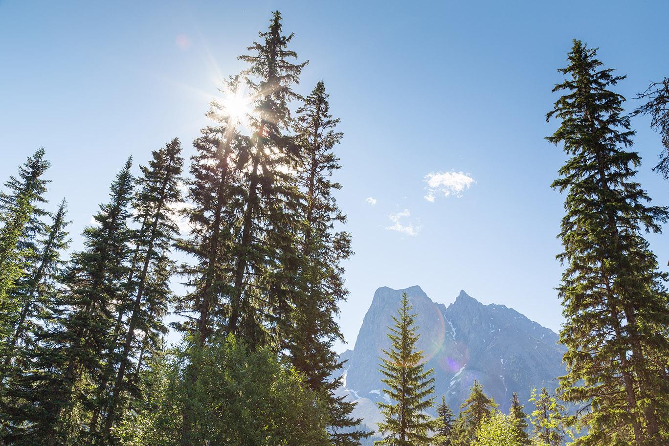 Alberta-26.jpg