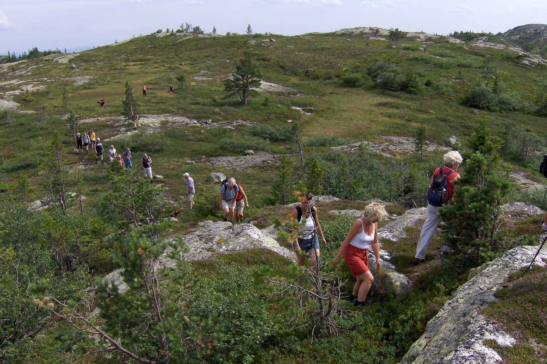 Guidet_tur_Rollasfjell.jpg