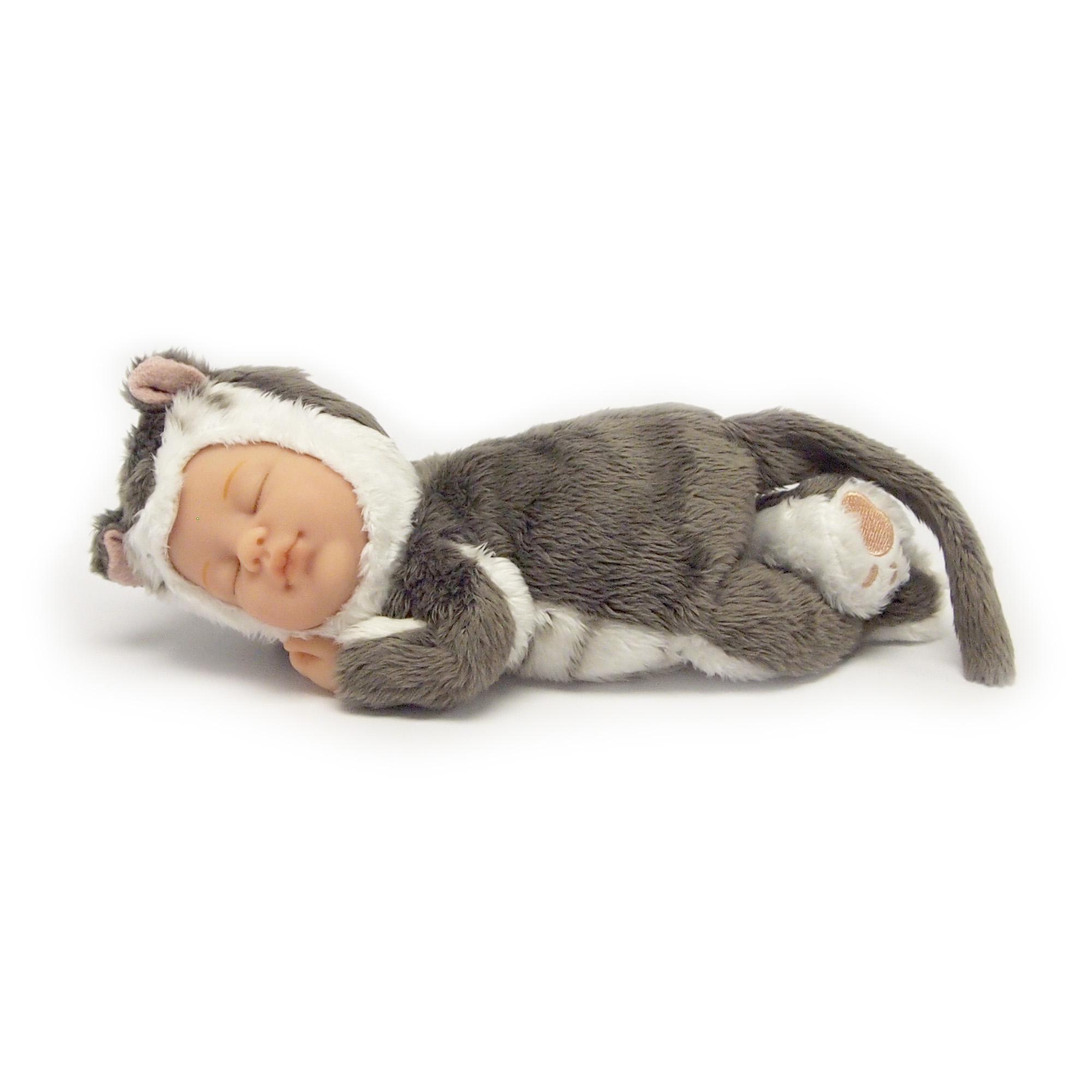 Baby Kitten.JPG