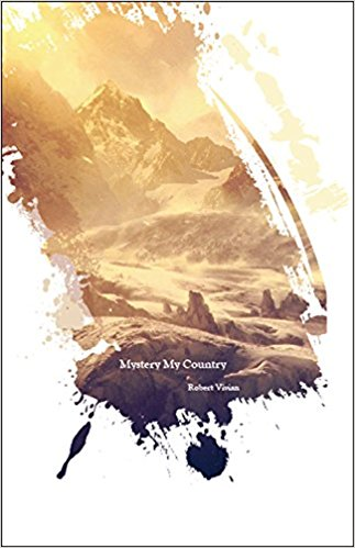 Mystery My Country  by Robert Vivian.