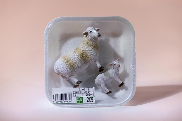 lamb_chop_fabrizio.jpg