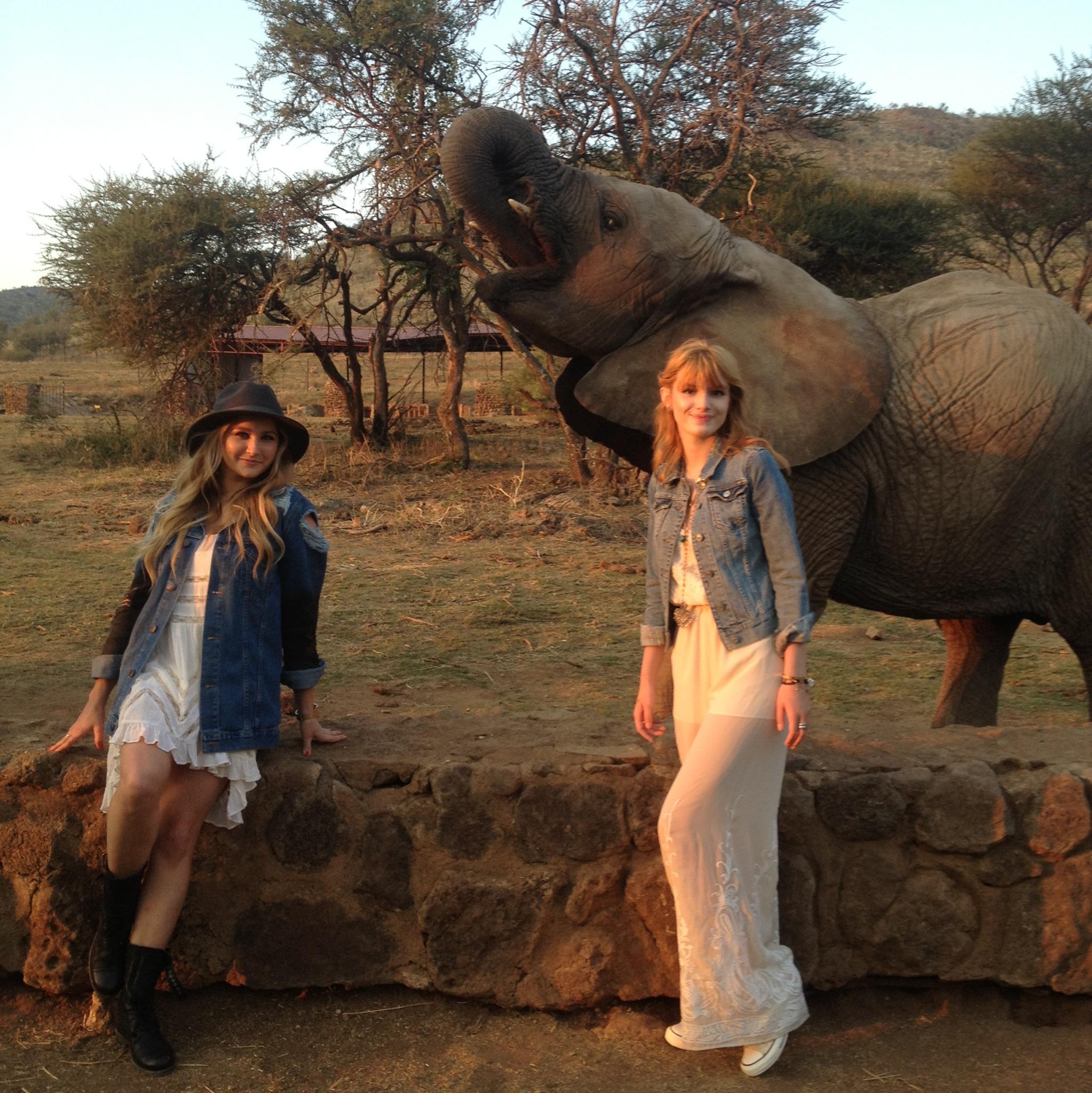 Bella Thorne Tonya Brewer South Africa