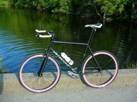 Bike Dilemma