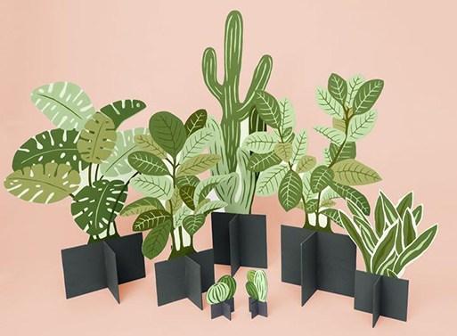 SR-Flat-Plants_01.jpg