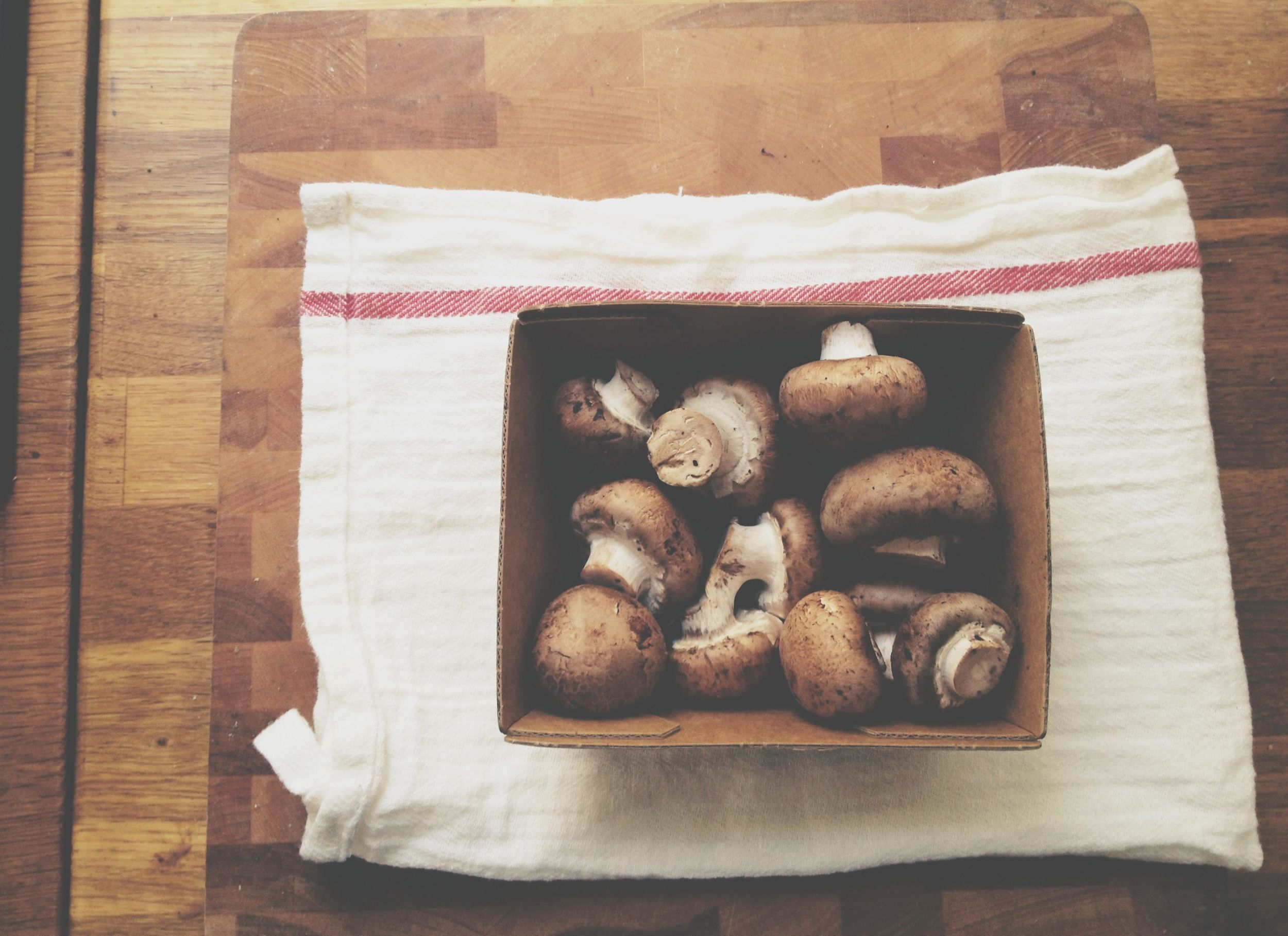 mushroom quesadillas1.jpg