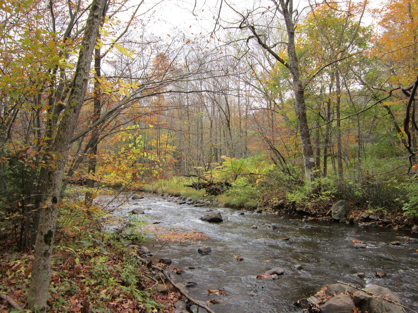 Housatonic River in fall.JPG