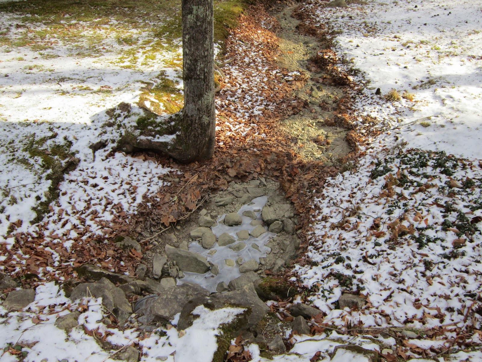 Winter in the Berkshires.JPG