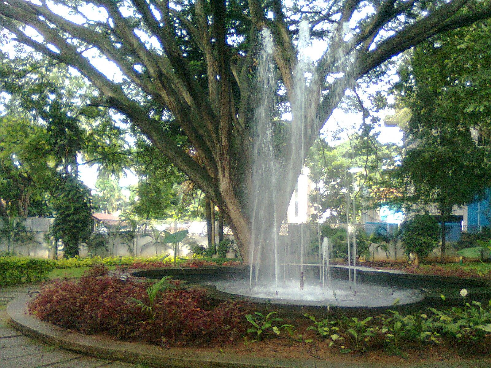 NGMA Garden.jpg