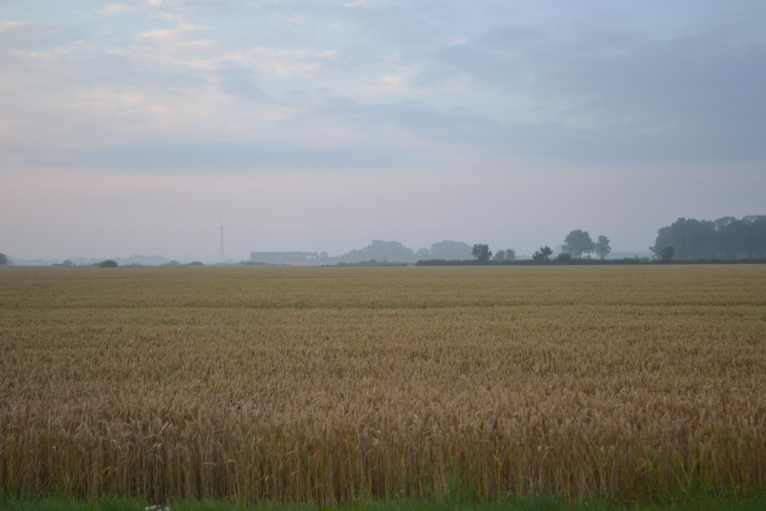 Farm outside of Helsingborg.JPG
