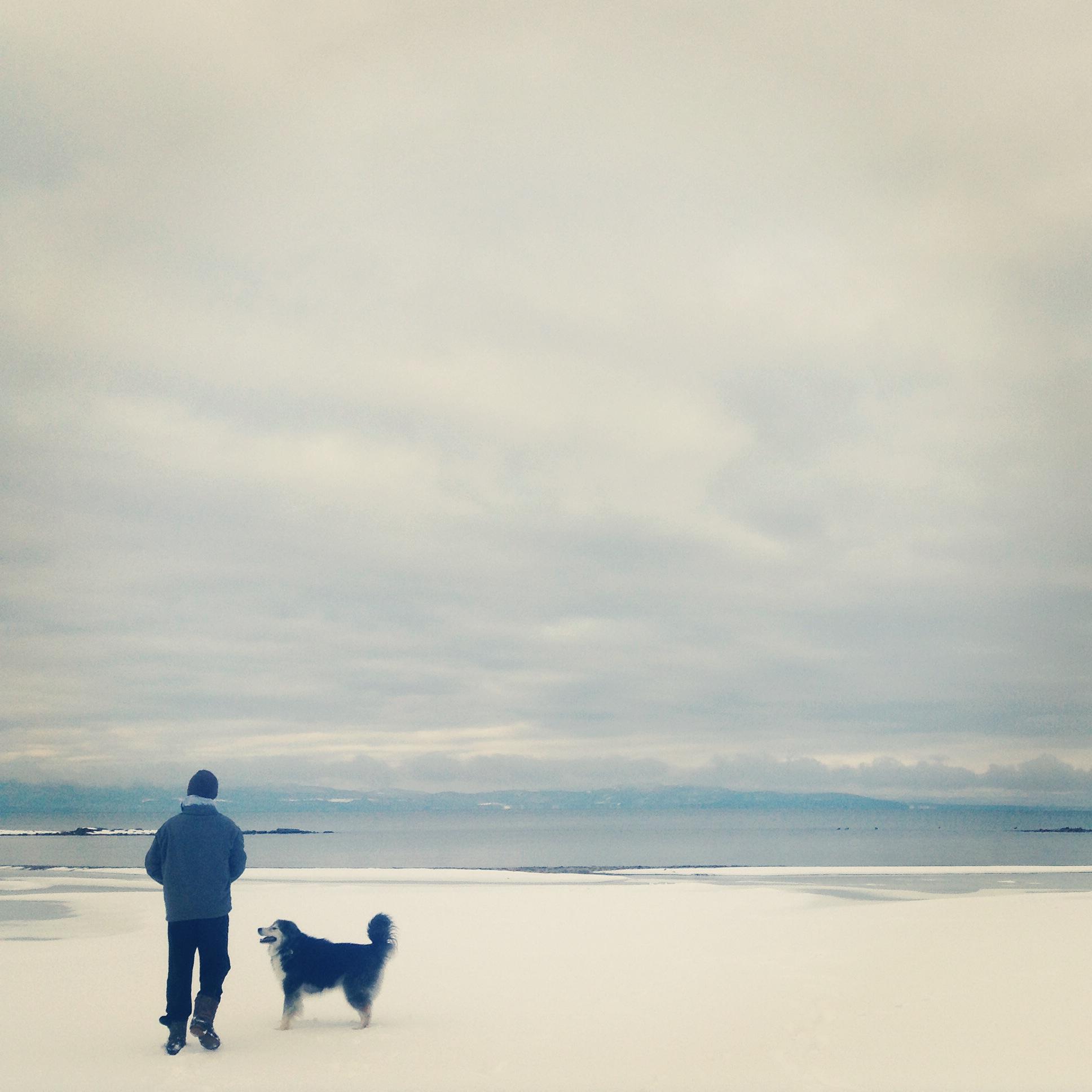 Lake Champlain in winter.JPG