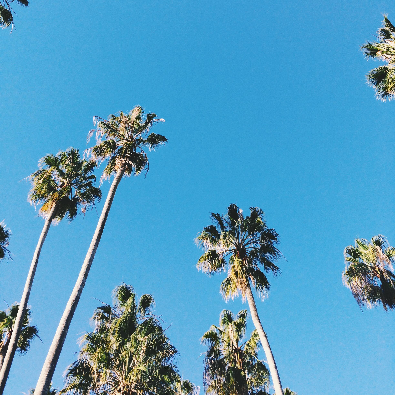 Winter in California