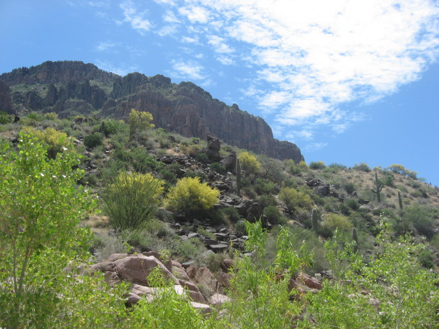 9 Hike to Salome Canyon (North of Phoenix).JPG