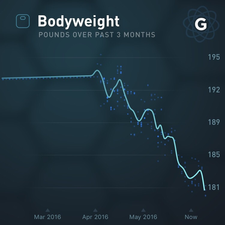 Gyroscope app (syncs with Fitbit scale)
