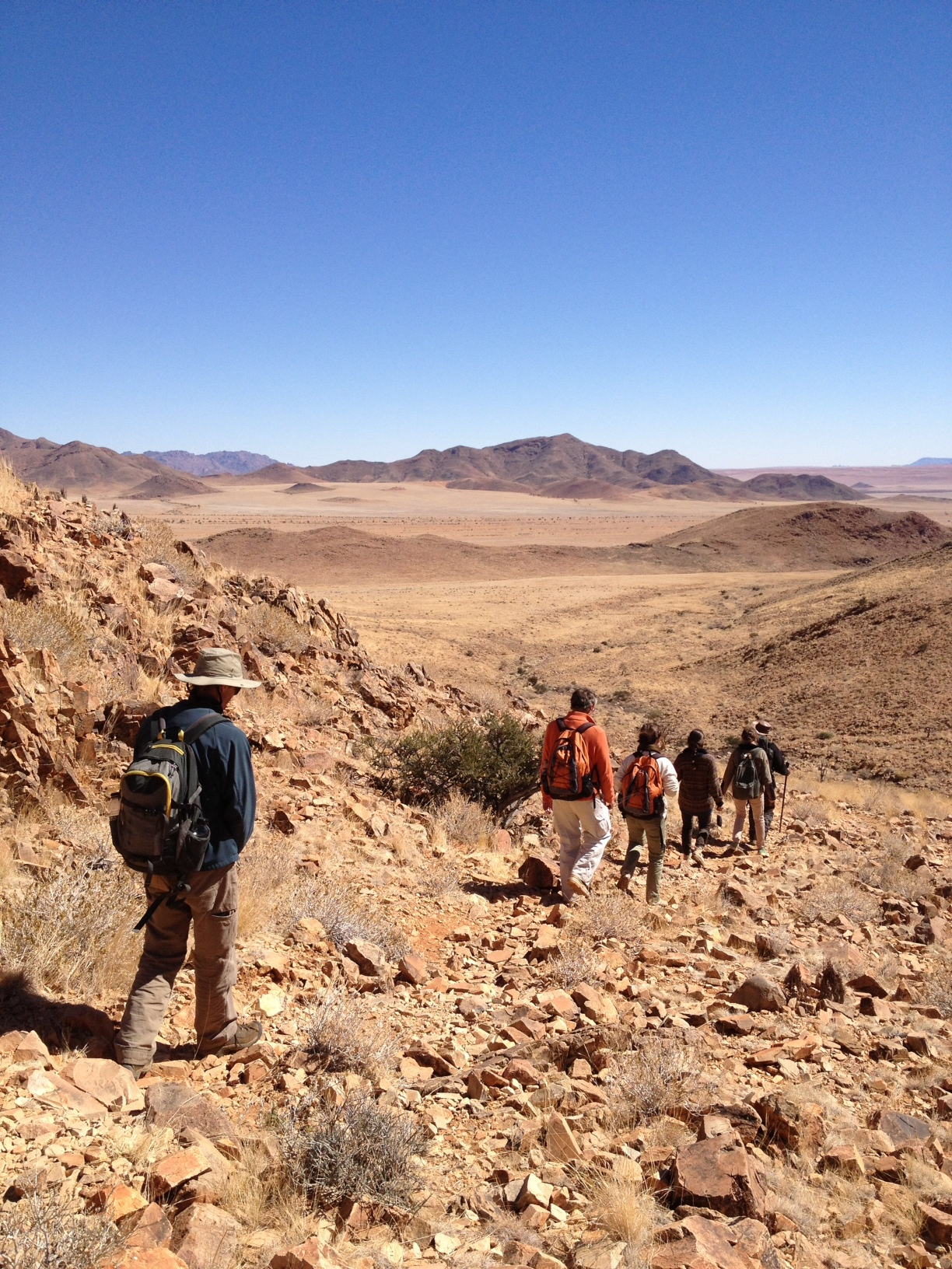 One small corner of the great Namib. Photo by me.