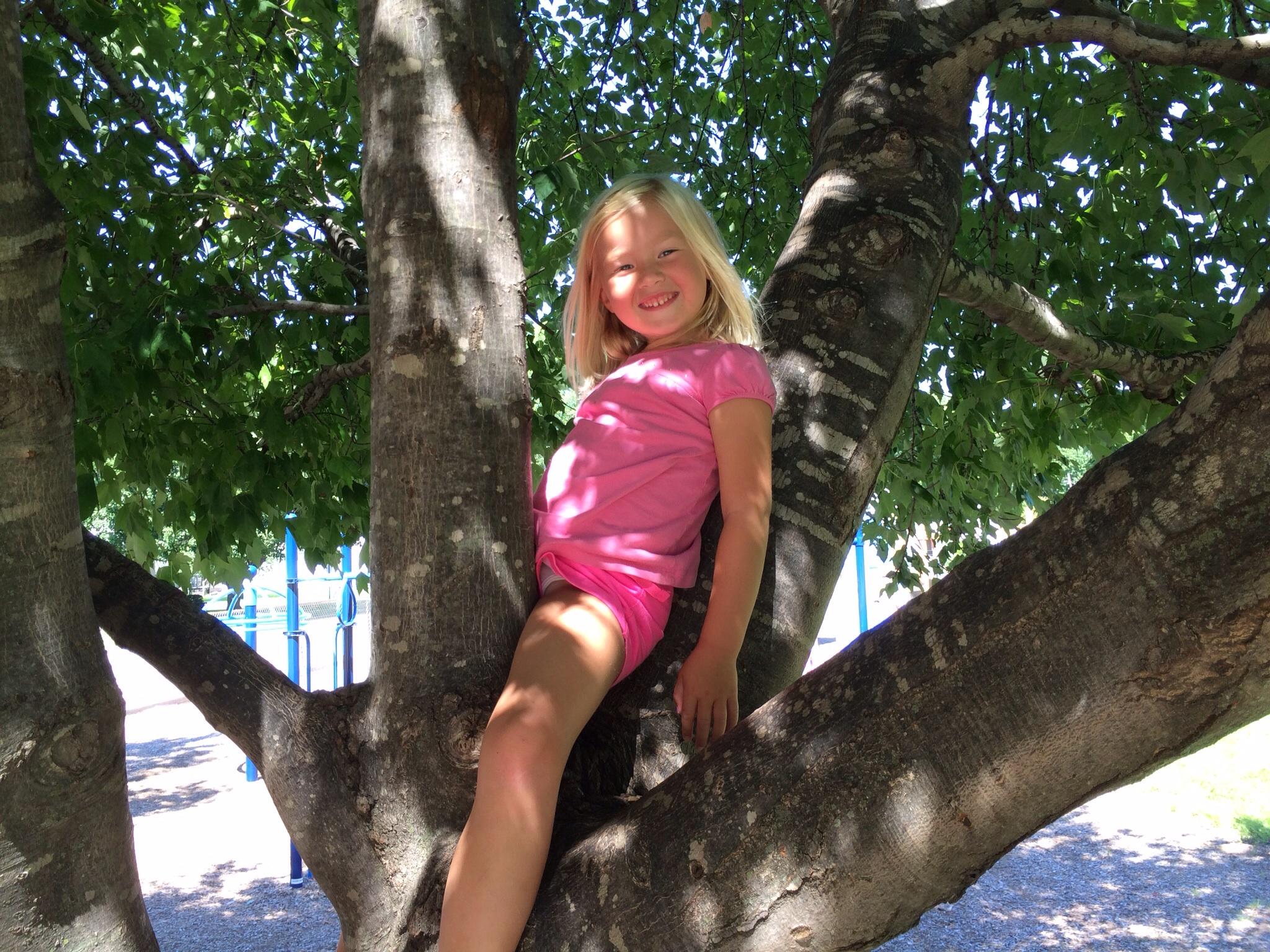 Tree hugger....er, climber