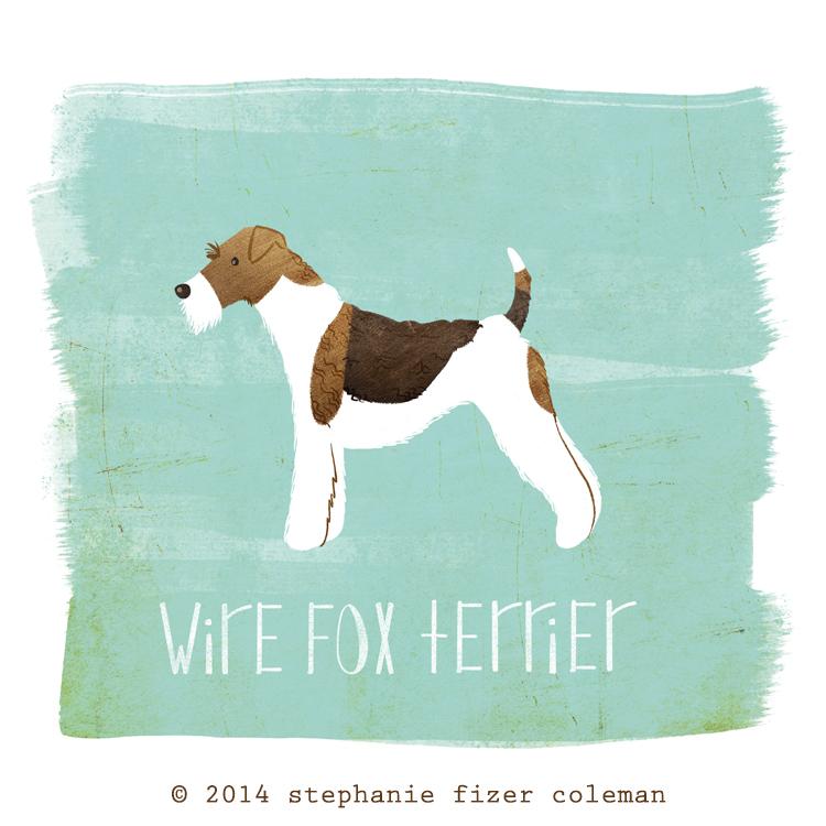 wire fox terrier.jpg