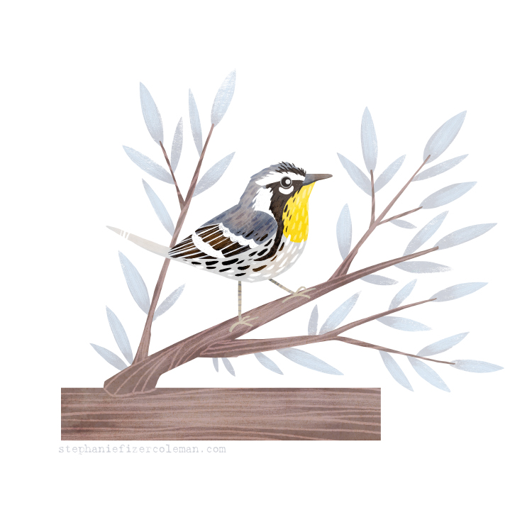 52 yellow throated warbler.jpg