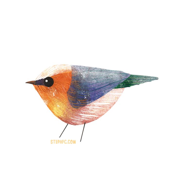 crested tit warbler.jpg