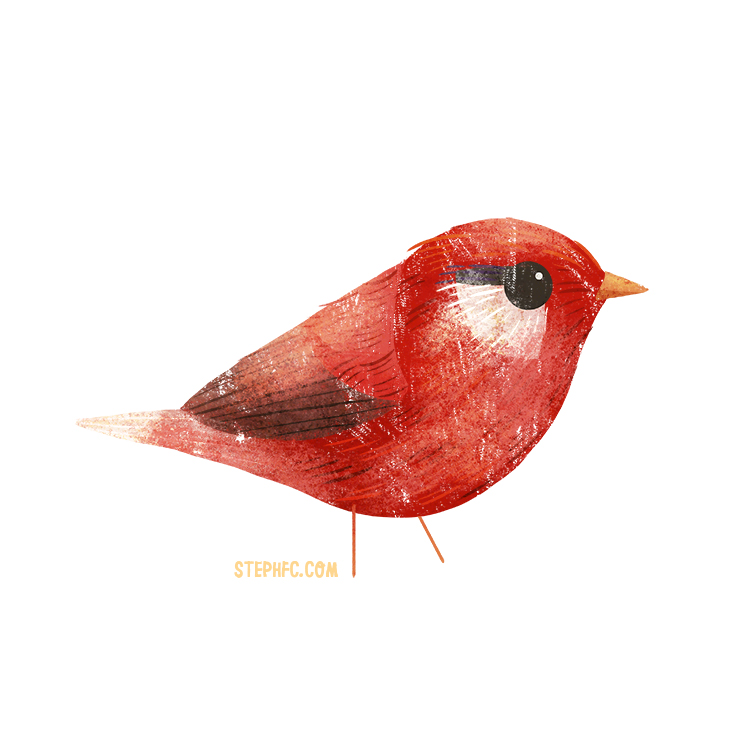red warbler.jpg