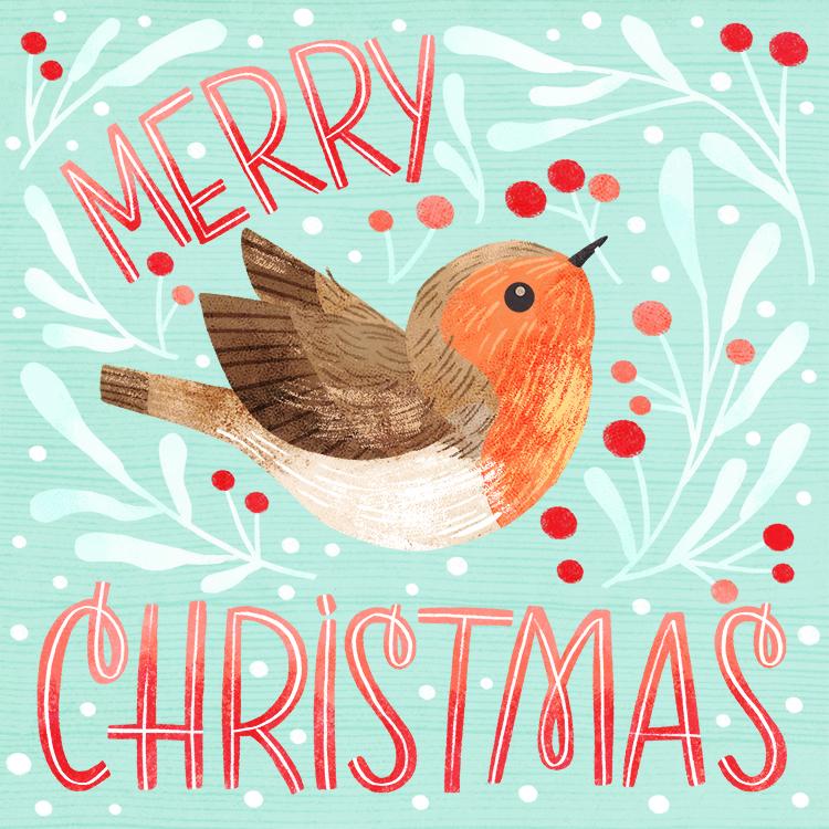 robin christmas_color.jpg