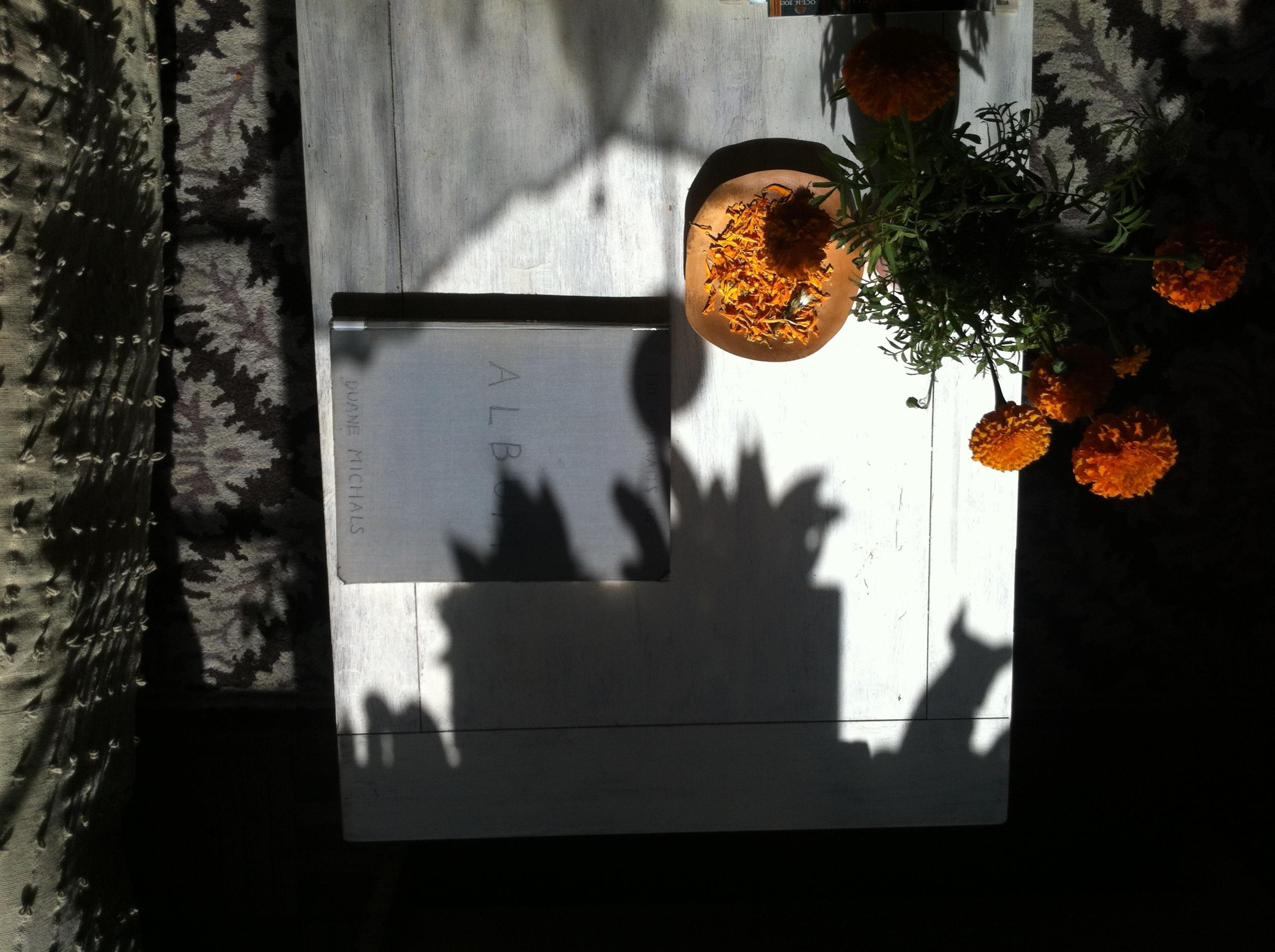 Kate Wichlinski Orange.JPG