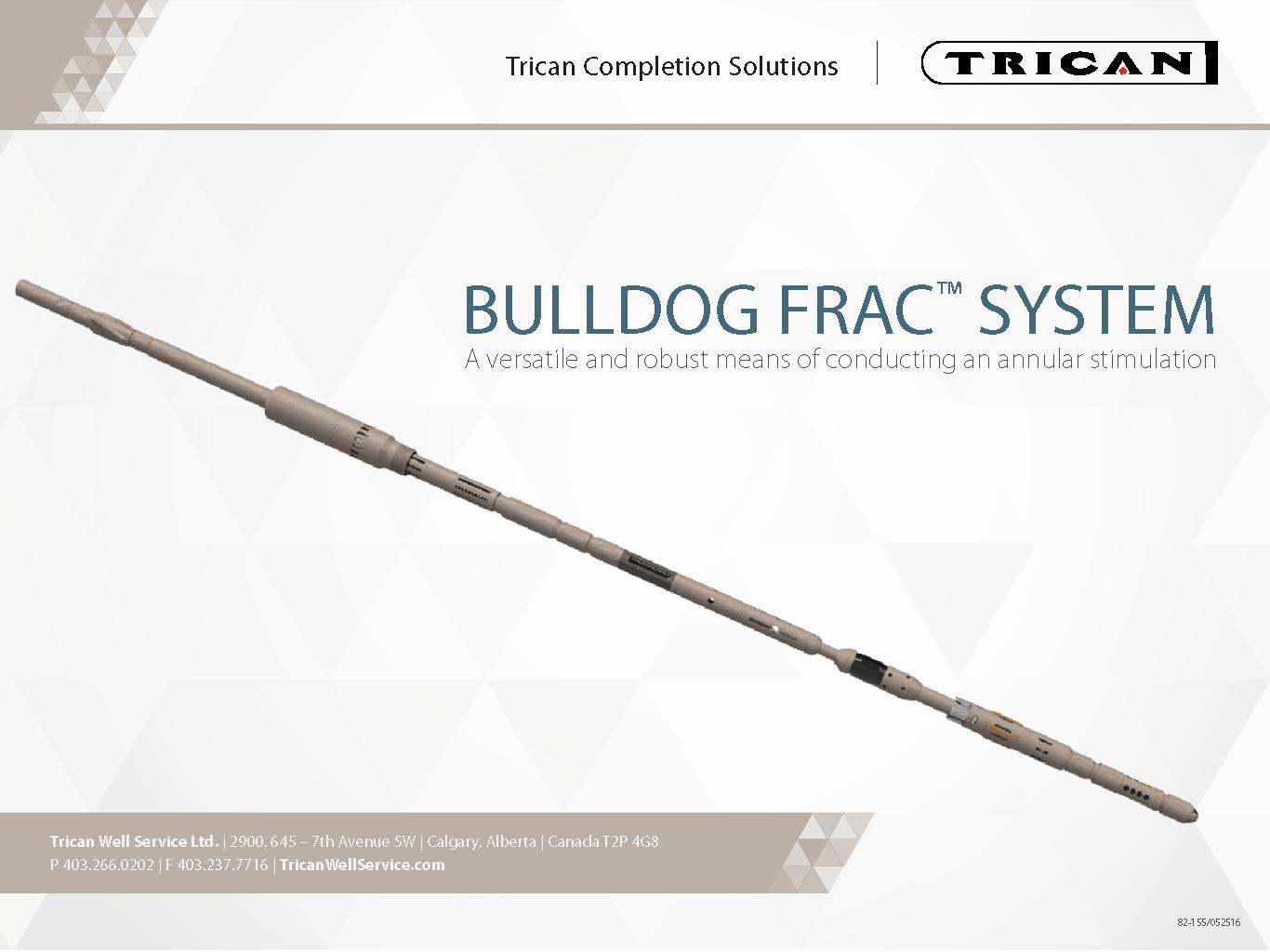 Trican_BullDogFracSystem_Presentation_Page_01.png
