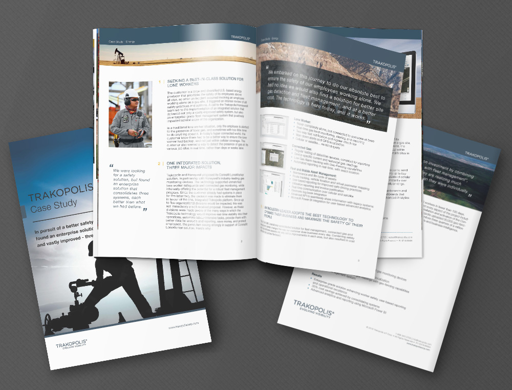 Energy Case Study  |  Click to Read