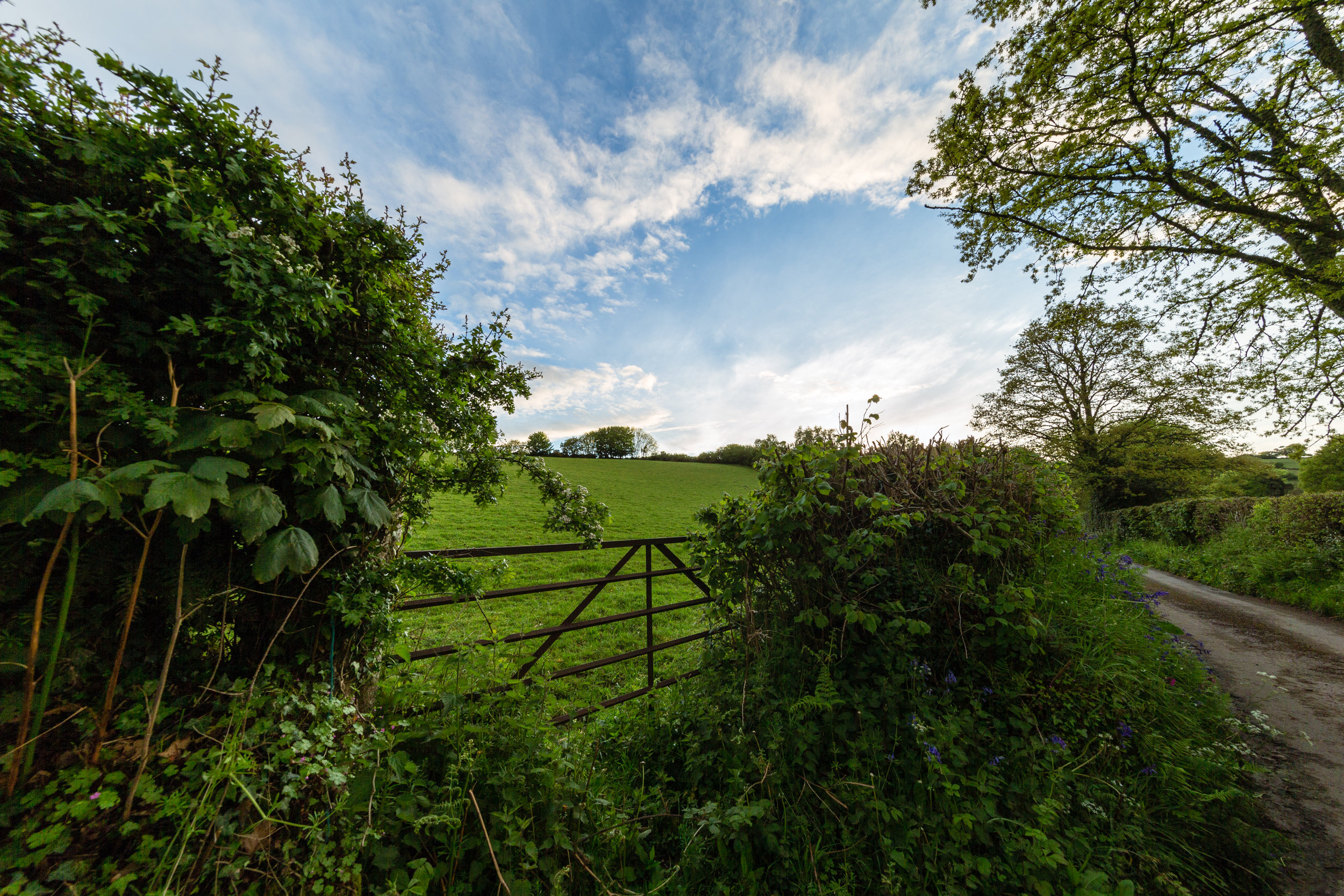 devon countryside farm gate