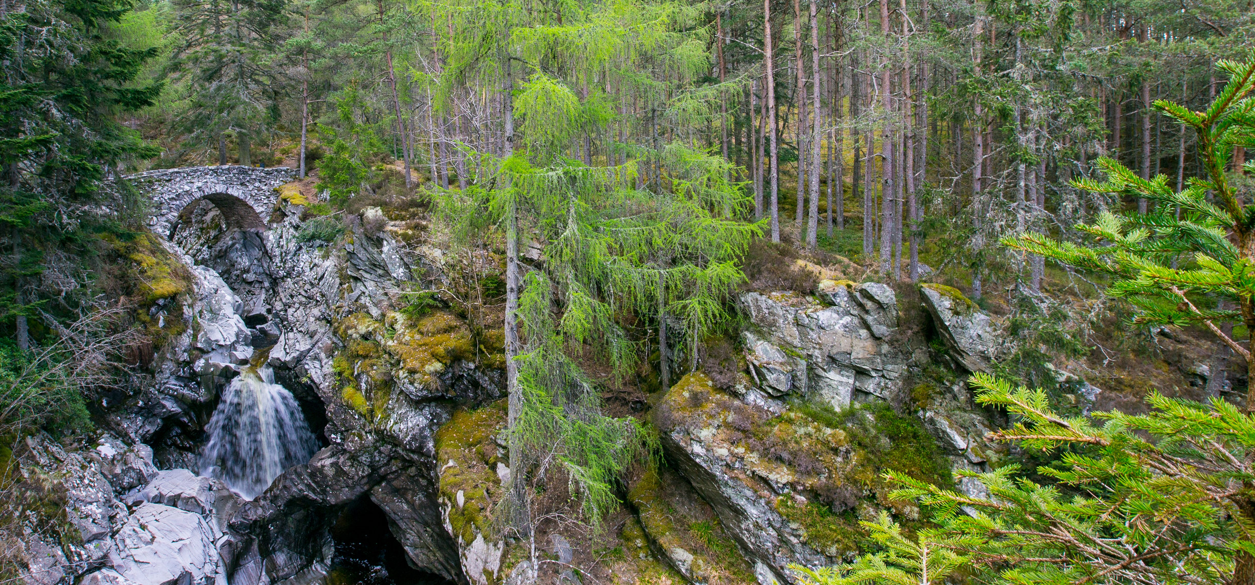 scotland bruar falls 2015 © jennifer bailey