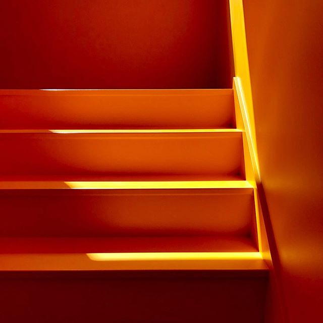 The sunlight this afternoon was nice and bright, casting amazing shadows into our yellow staircase and making it absolutely glow! ☀️ . . . . . #xanthic #yellow #xanthicasa #yellowstairs #sunshine #amazingshadows #graymagazine #dwellmagazine #howwedwell  #interiors #interiorporn #interiorspaces #interiordesire #notafraidofcolor #pdx #portlandhomes